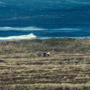 Vesterhavet Dirty Jutland 2018